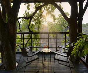 /images/wild-life/6-night-7-days-nagpur-bhopal/pench-tree-lodge/2.jpg